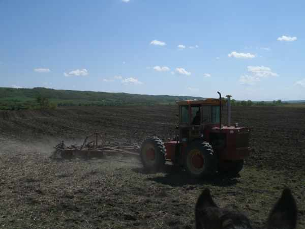 Cultivating the Land for Seeding
